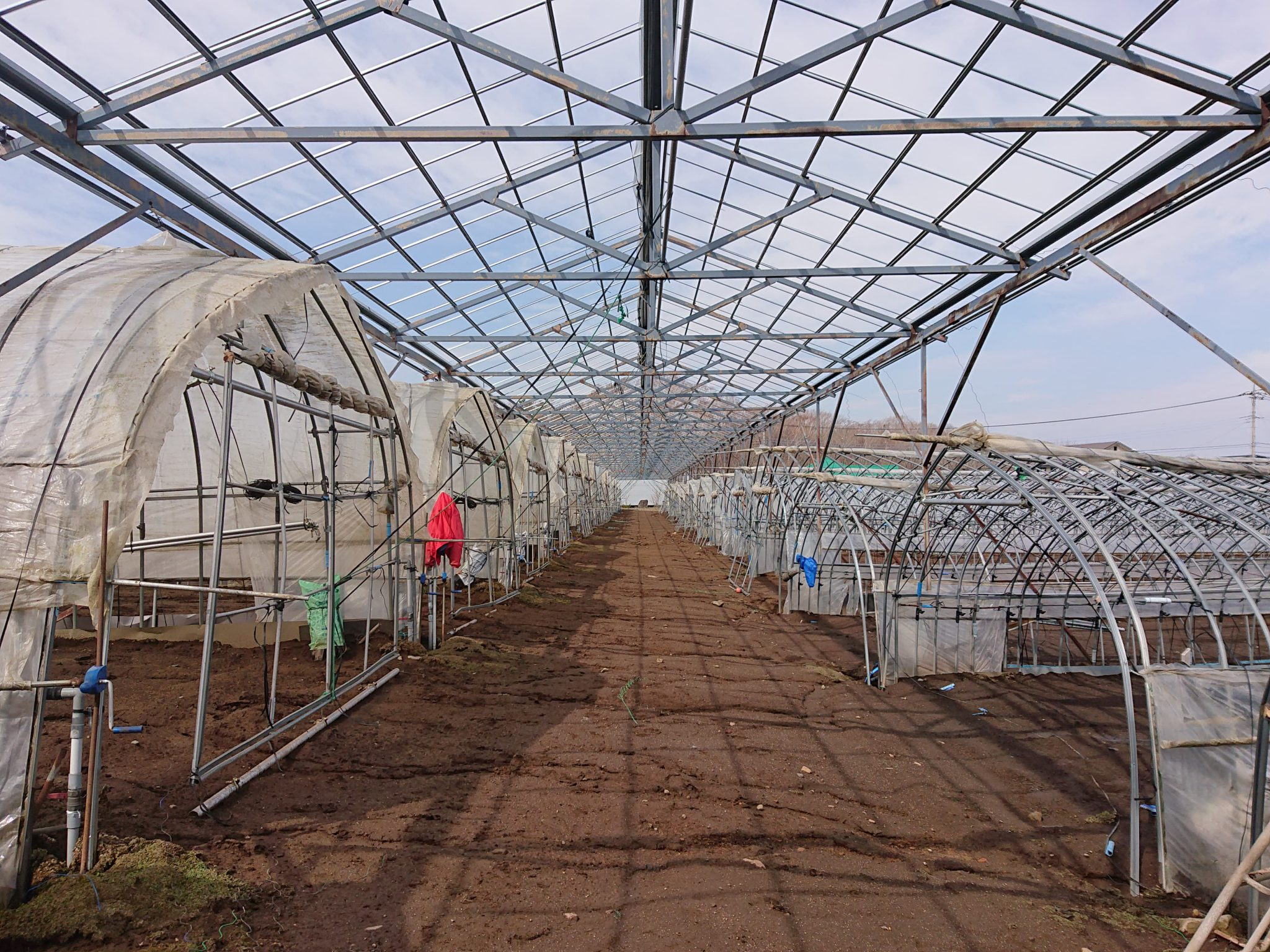 農業支援コミュニティ「農援隊」発足、新型コロナ休業に伴う農業課題を解決へ